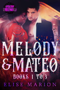 Melody&Mateo.Ebook